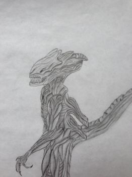 Xenomorph ( with human DNA) by Cloudman313