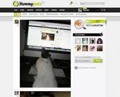 Yummypets - Social Network for Cute Pets v2 by GrunySo