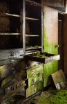Mossy Drawers by EllipticalSpace