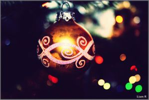 Christmas is coming by liamRrrr