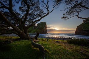 Eastern Cape by carlosthe
