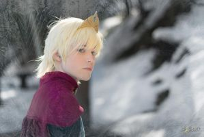 Elsa Cosplay (Male Version - Elias) - Don't Feel by DakunCosplay