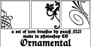 Ornamental Icon Frame Brushes by princesspeach0221