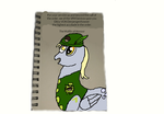 MEDAL OF HONOR FOR DERPY DITZY MUFFINS DOO HOOVES by DEVIOUS-DISCORD-RP