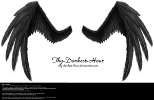 Fiction Wings - Black by Thy-Darkest-Hour
