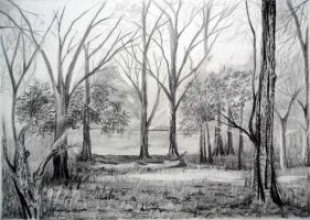 Bare trees by aakritiarts