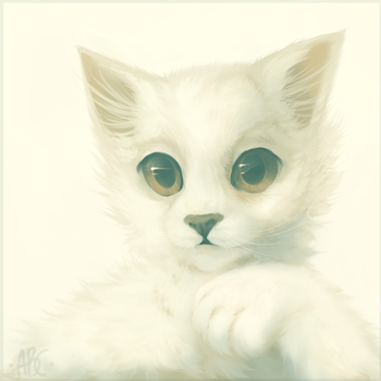 Cute kitty by ChocoladeCatt