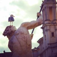 Roma, piazza Navona by arnopiel