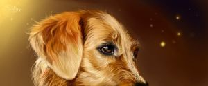 Golden Dog by SalamanDra-S