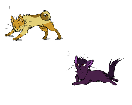 Cheap Feline Adopts - ONE LEFT! by WolveFalcoAdoptables