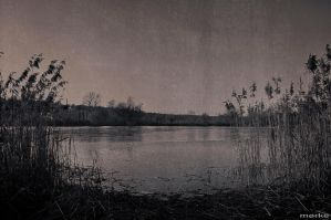 quiet slough by MorkePhotography