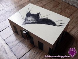 Cat  Box by Shadowisper