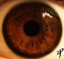 Brown eye macro by yvsan