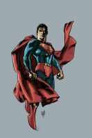Superman Colours by harley00