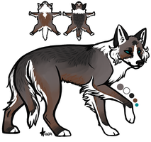 coydog design by stellified