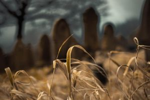 Hallowed Ground by ChrisDC123