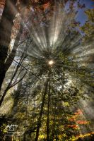 HDR Rays of light by Nebey