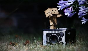 Danbo by NCSphotography