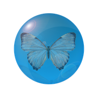 Blue Butterfly by TheQueenMadonna