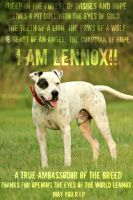 I am Lennox! by kingstonrey
