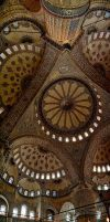 The Blue Mosque by pandaonmars