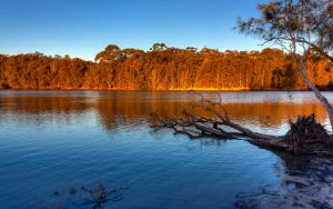 Narrabeen Lake by SxyfrG