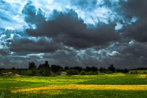 Before-the-Storm by NikNikonov