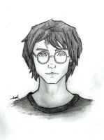 Support Potter by LunaHermione