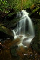 Un-named GSMNP by TRBPhotographyLLC