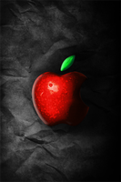 Real Apple iPhone Wallpaper by cderekw