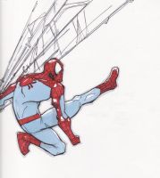 The Spectacular Spiderman by boricuanart