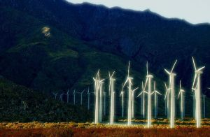 inherit the wind. 2 by socaltimes