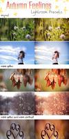 LR Preset Pack: Autumn Feelings by DorottyaS