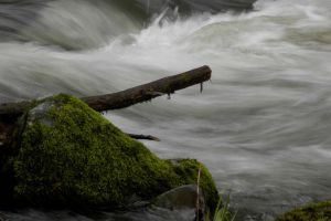 Goble Creek by MyImaginaryVisions