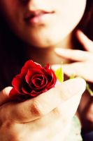 May Your Love Shine Roses by UntamedUnwanted