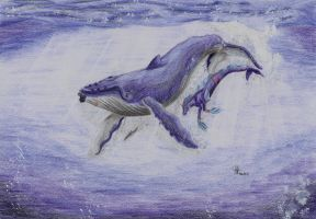 Whale Song by PolarisAstrum