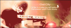 Owl City - Fireflies Signature Banner by OmriStyle