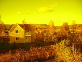 mellow yellow by Eveleth