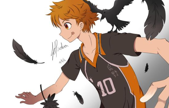 Hinata Shouyou :D by JhyD