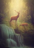 Father and son by MariLucia