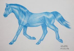 Trotting Blue by Salvada