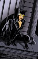 Catwoman by gavinsmith
