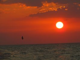 Coucher de Soleil Varadero 5 by Cam-s-creations