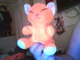 I re-sew this plushie by Amaterasu134