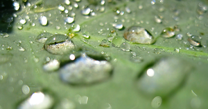 Complex Water Droplets 2 by OneofakindKnight