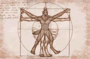 The Vitruvian Wolfman by prika-senpai