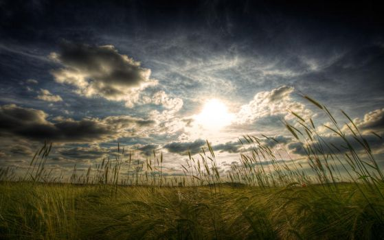 Majestic Skies - Part III by myINQI