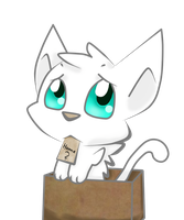 Cat in a box by FlareMor