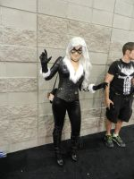 Phoenix Comicon 2015 Black Cat by Demon-Lord-Cosplay