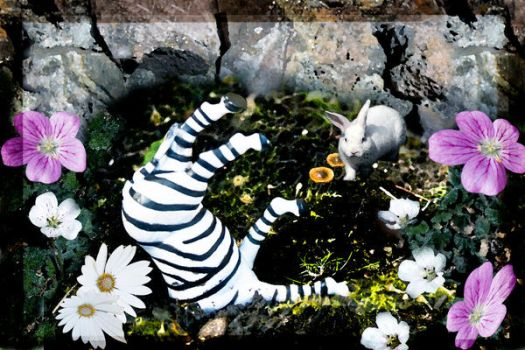Mr. Zebra Falls Down the Hole by EndTheInnocence